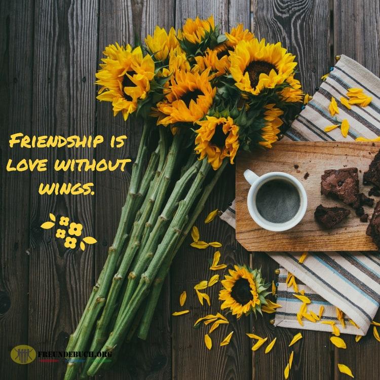 Sonnenblume Freundschaft Spruch